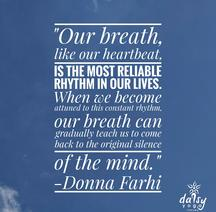 6 Count Breath Meditation Daisy Yoga Studio